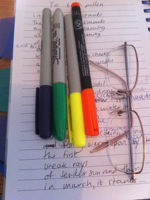 My writing process - Ruth Holroyd of what allergy