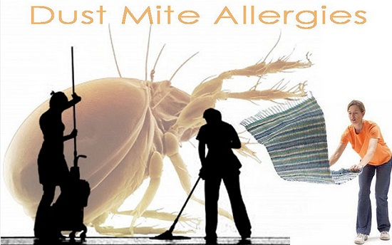 Dust mite allergens in the bedroom