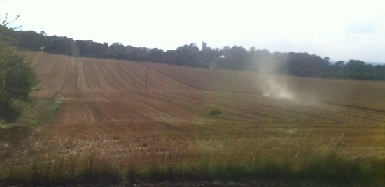 Living opposite a wheat field during harvest time - wheat allergy