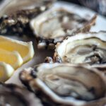 do oyster shells contain protein